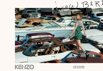 """KENZO全新影片""""Snowbird""""    自由的呼喚"""