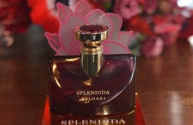 Magnolia Sensuel    女神的氣味 !