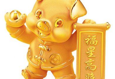 金豬接福   喜迎新歲
