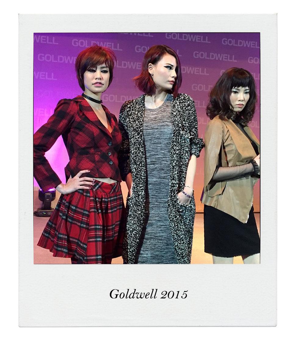 Goldwell19071501
