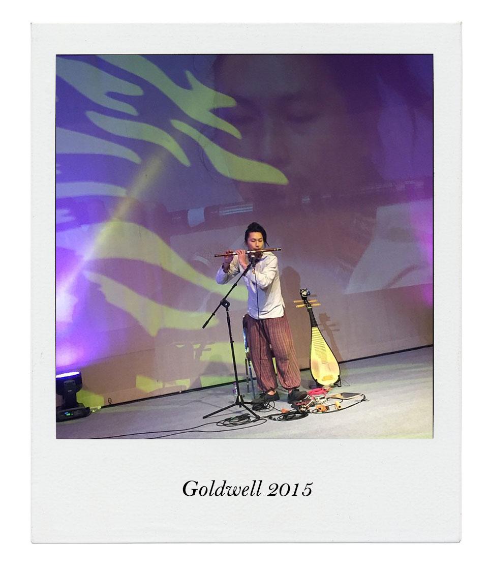 Goldwell19071503