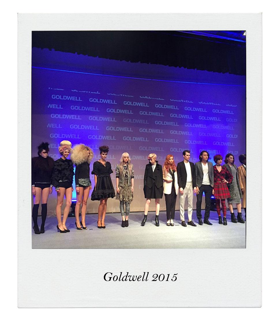 Goldwell19071504