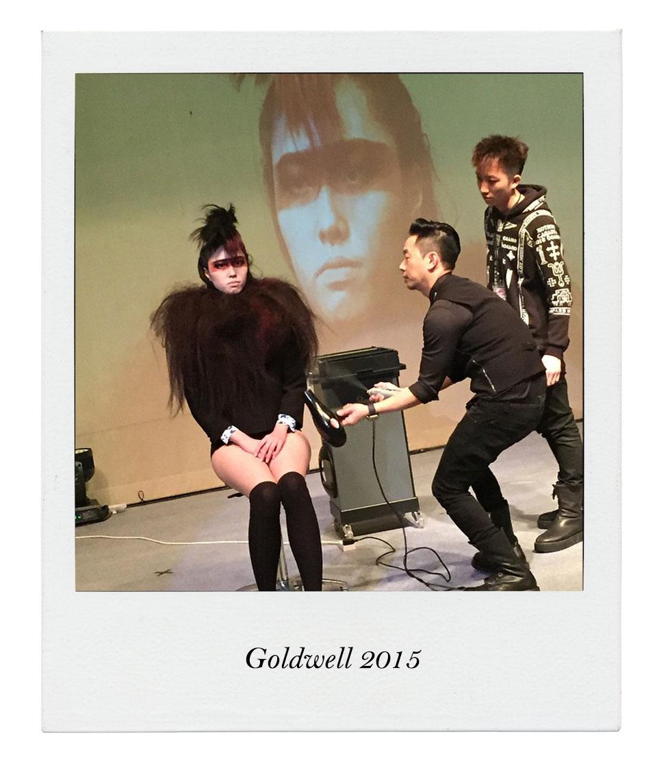 Goldwell19071507