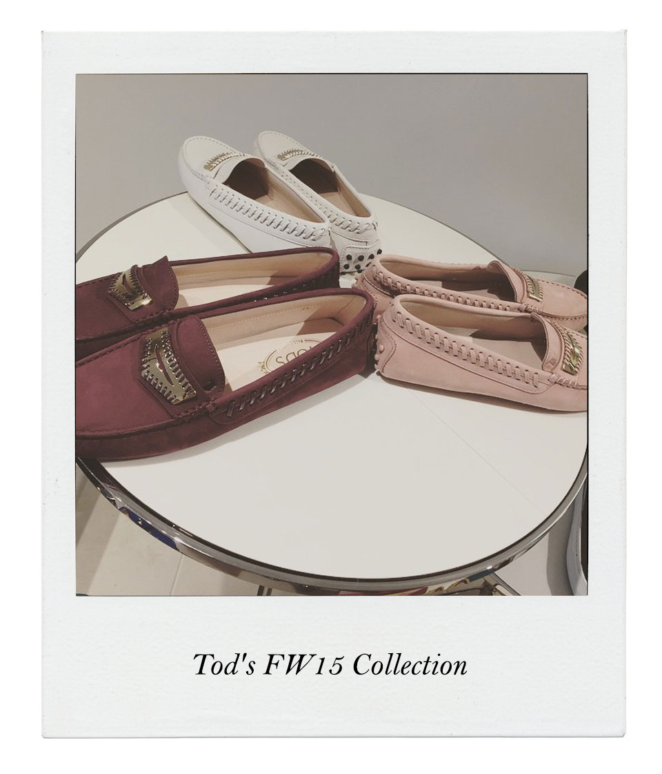 Tods20071504
